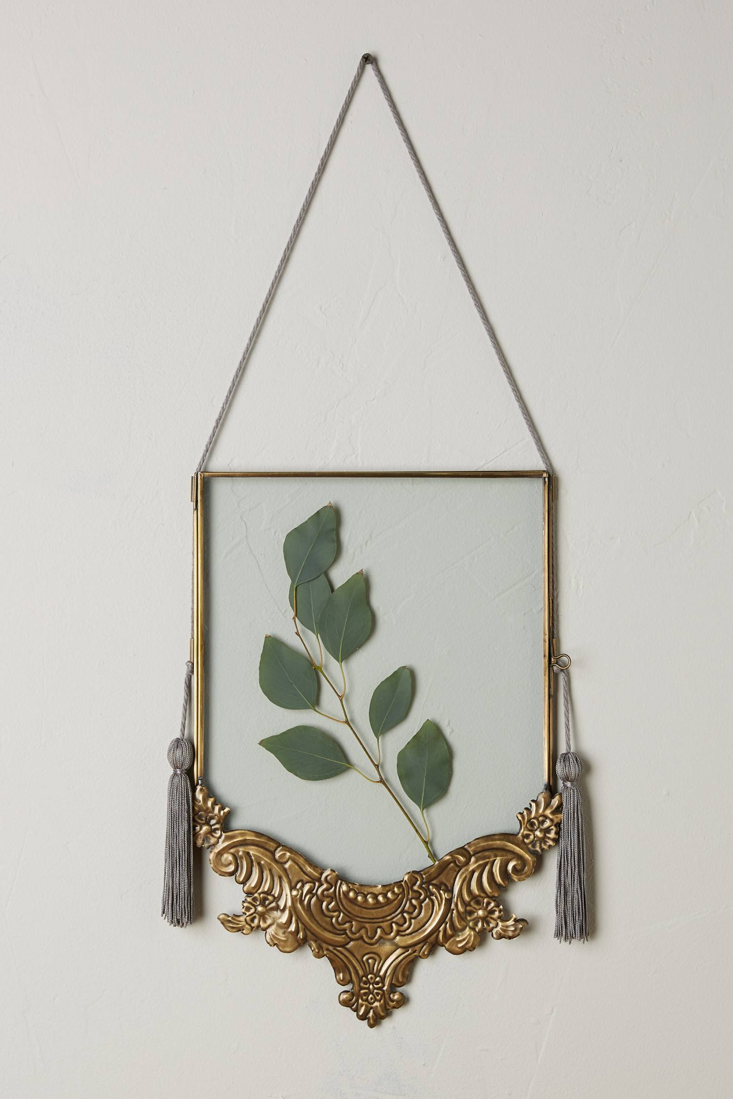 Anthropologie Royal Frames