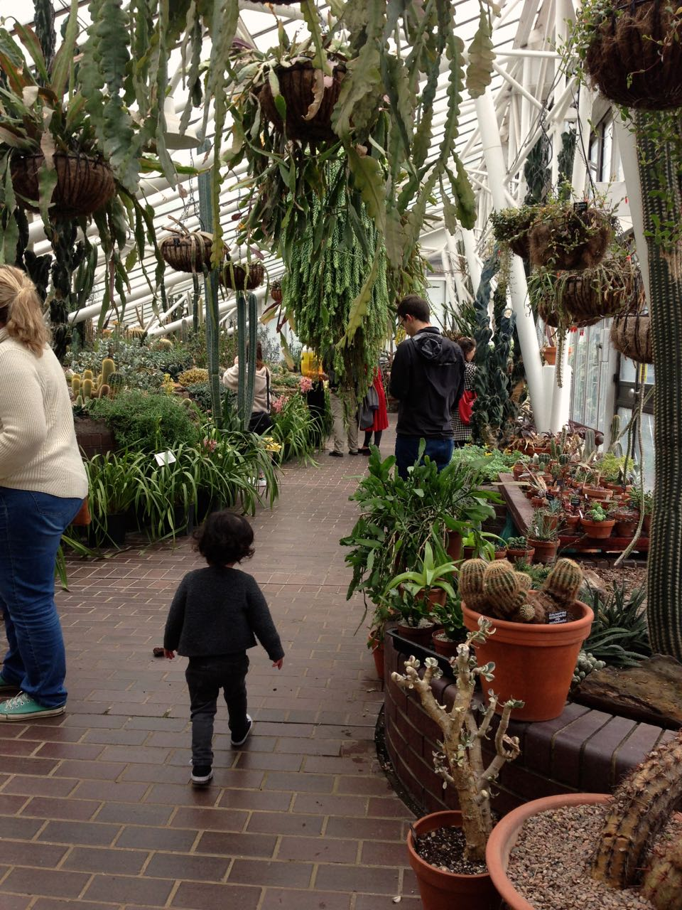 Indoor Weekend Activity : The Barbican Conservatory